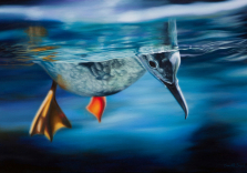 camille-engel-floating-between-two-worlds-24x36-oil