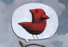 the-thought-of-a-cardinal